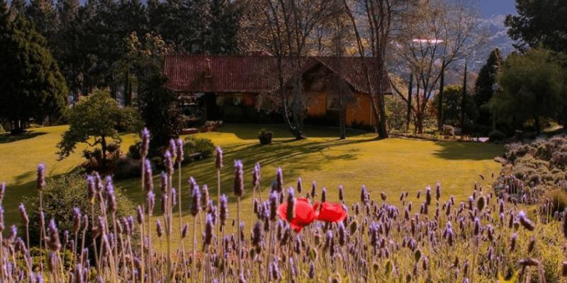 Gramado para casal: roteiros para fazer a dois - Le Jardin Gramado
