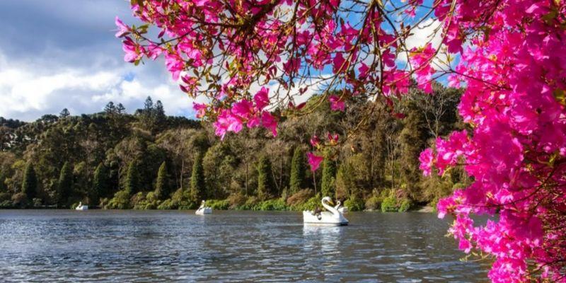 Lago Negro - Gramado - Cleiton Thiele